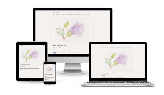 Website design for Sharon Field